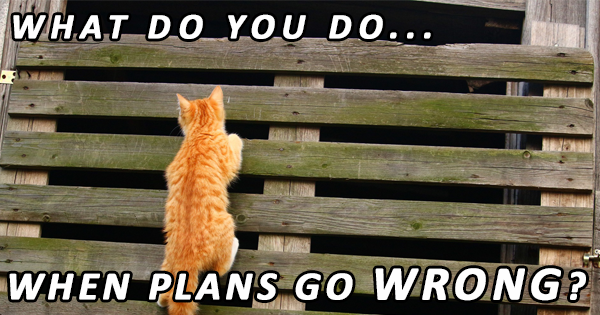 What do you do when plans go wrong?