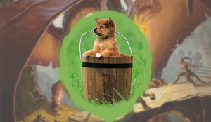 dungeons and dragons homebrew puppy puppies bucket cute